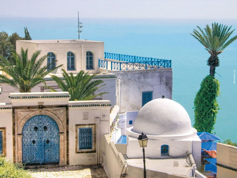 tunesien sidi bou said palme berge und meer