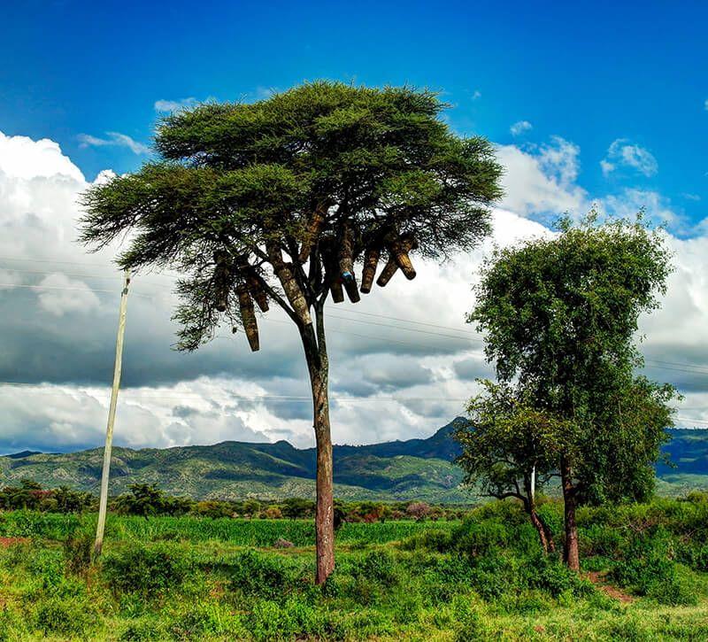 aethiopien nechisar np berge und meer
