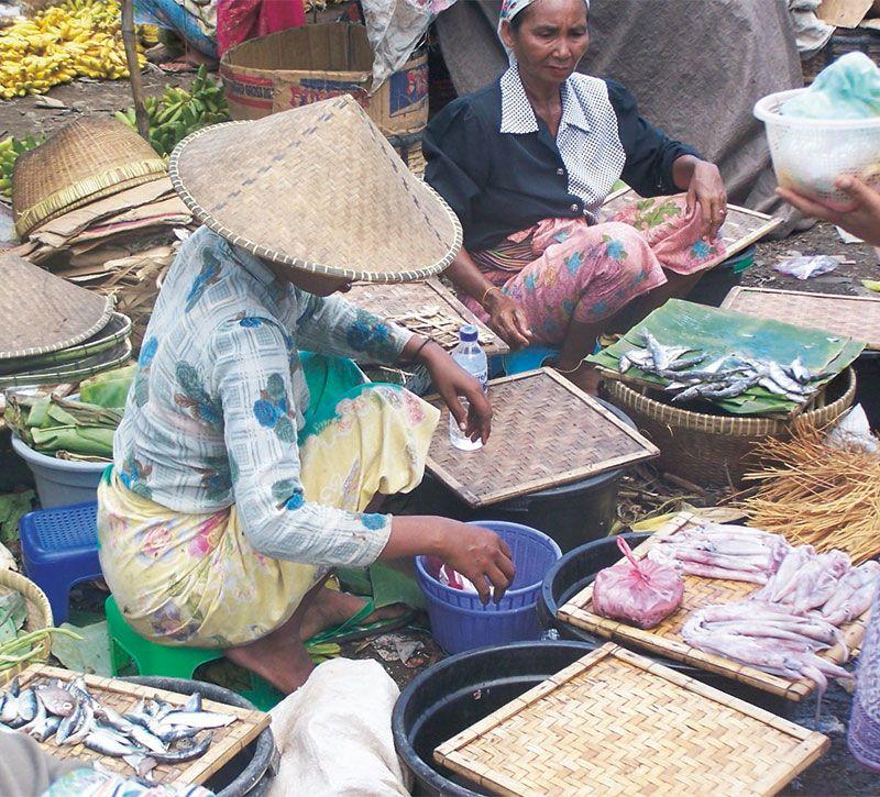 indonesien essen berge und meer