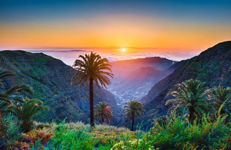 Tropische landschaft mit palmen
