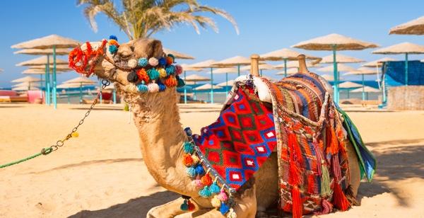 Hurghada strand