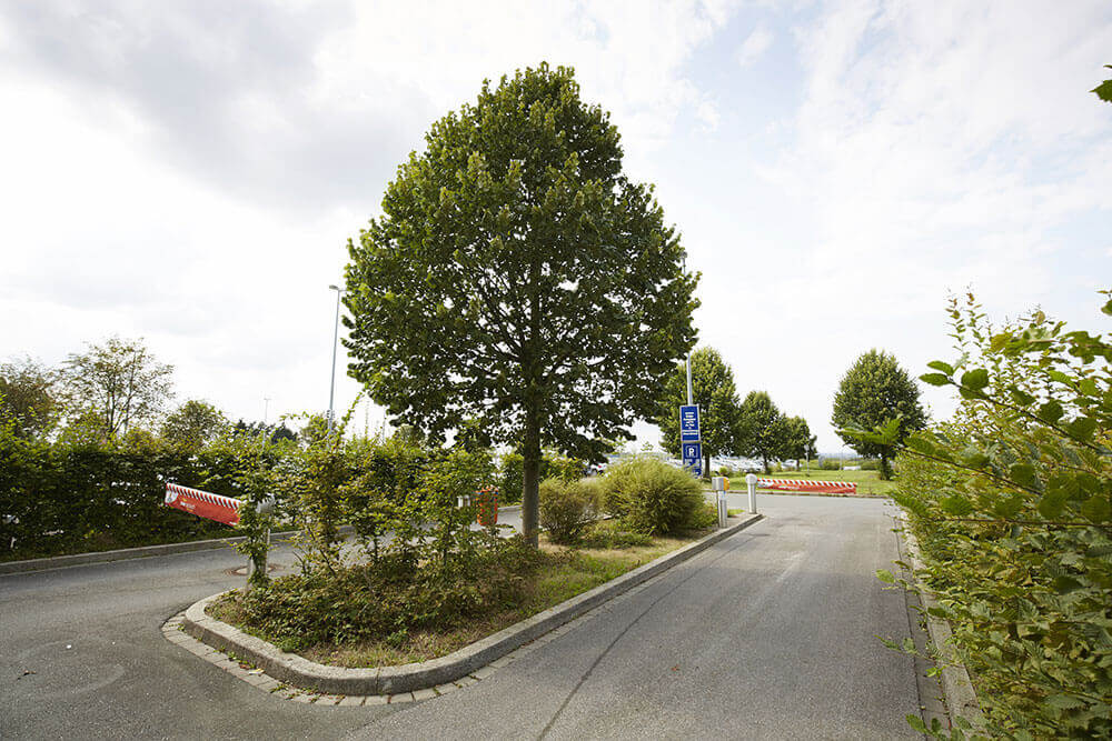 Parkplatz p6 am flughafen dortmund2 optim
