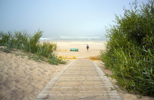 Palanga strand
