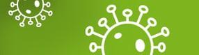 Corona: Informationen für Reisende