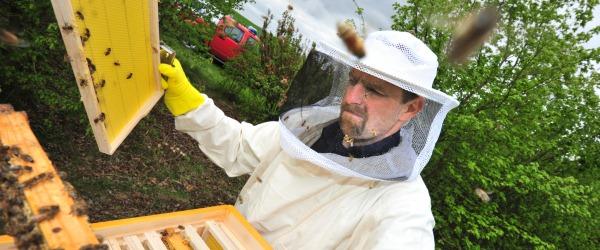 Honig best tigt hohe umweltqualit t dtm 14 11 2014 s
