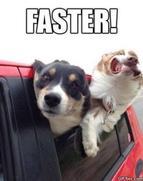 Faster Meme