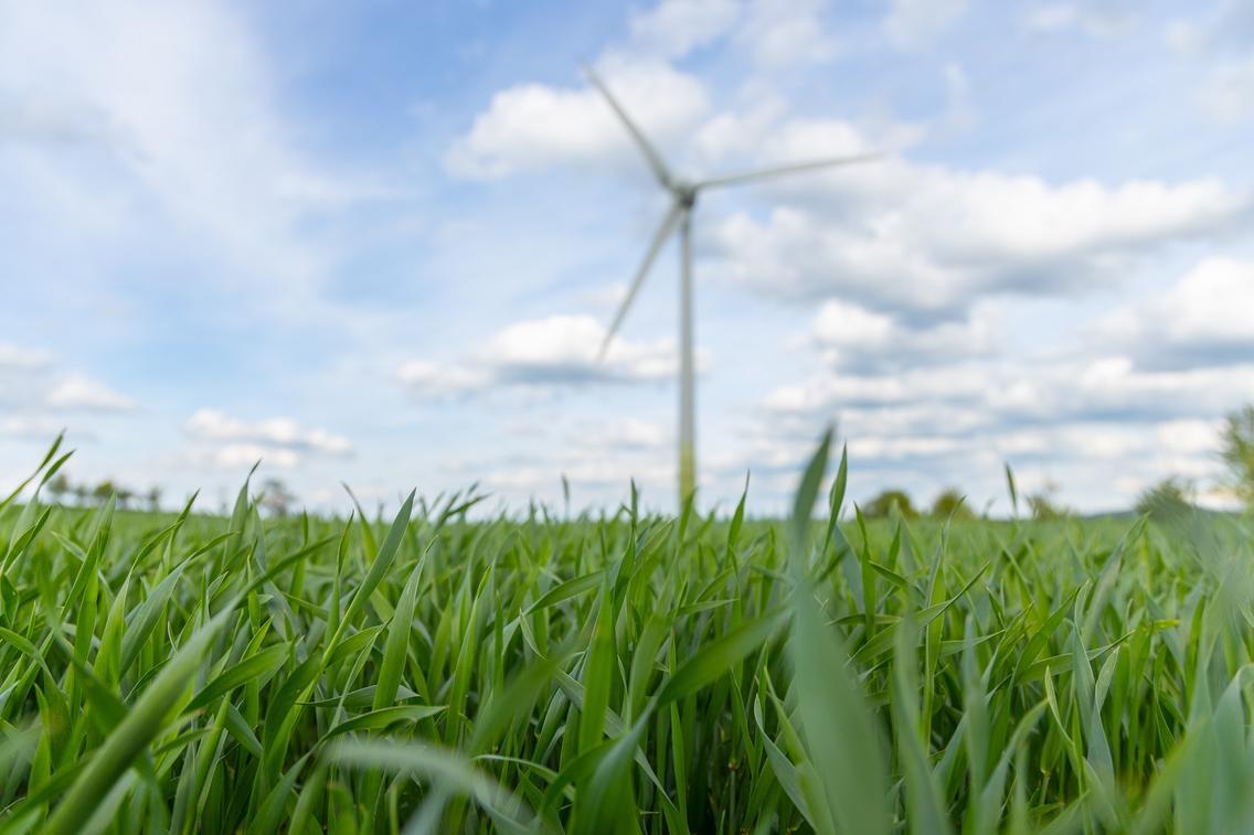 Windkraftwerk auf Wiese