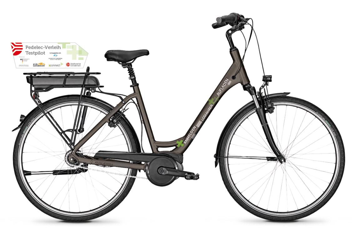 e-Bike Modell aus dem Pedelec-Verleih