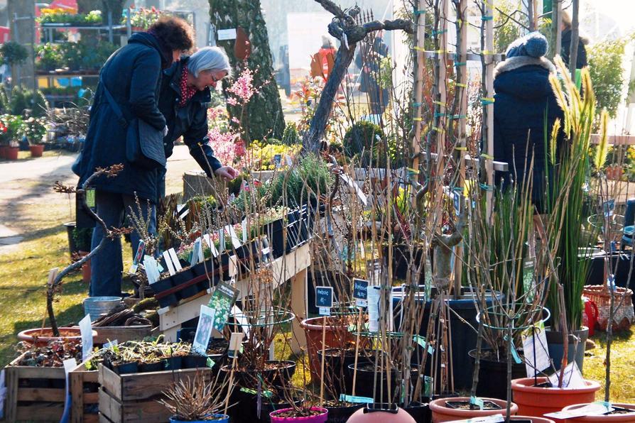 """Bei der """"Gartenzeit"""" im Moskaubad werden am 7. April Frühlings- und Gartentrends vorgestellt."""