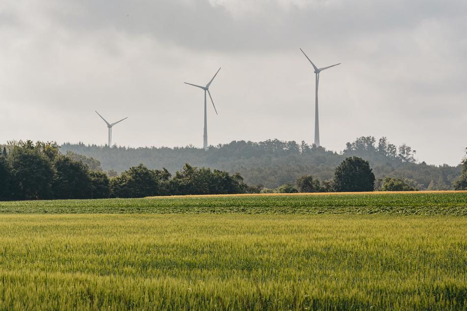 Windkraftanlagen auf Feld