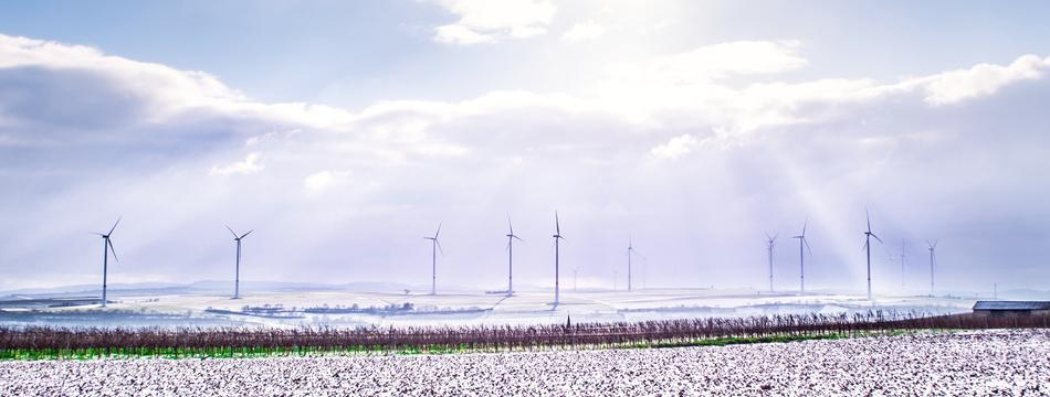 Windkraftanlagen auf einem Feld im Winter
