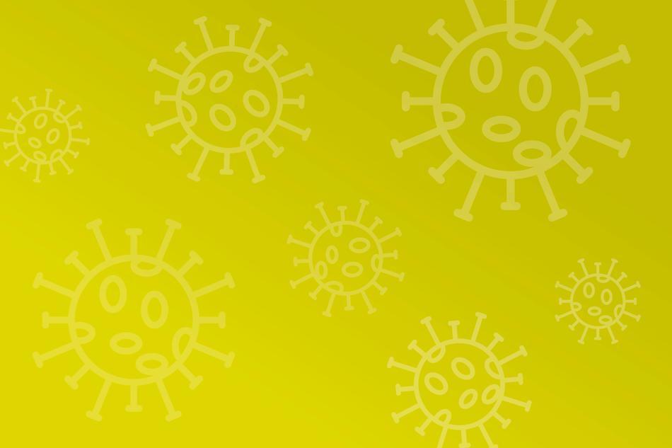 Corona-FAQ für das Nettedrom