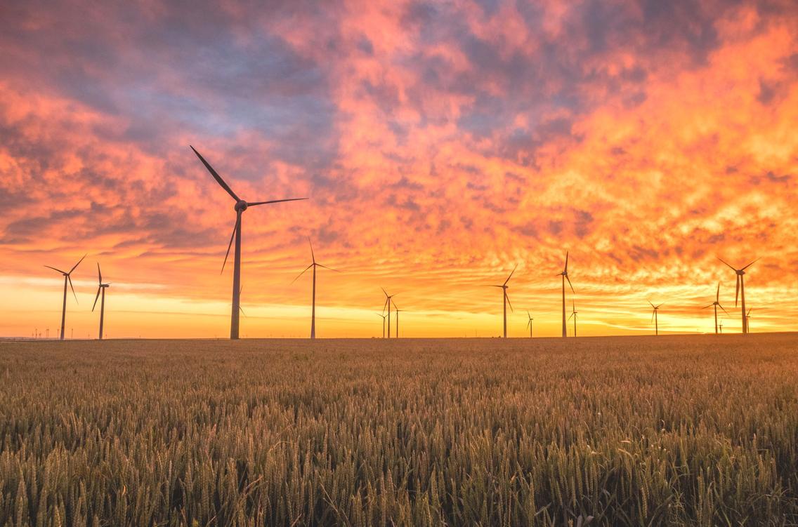 Windräder auf einem Feld beim Sonnenuntergang