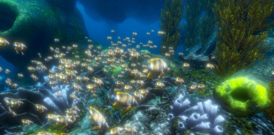 """Beim VR-Schnorcheln können die Teilnehmer in eine bunte Meereswelt oder das faszinierende Weltall """"abtauchen""""."""
