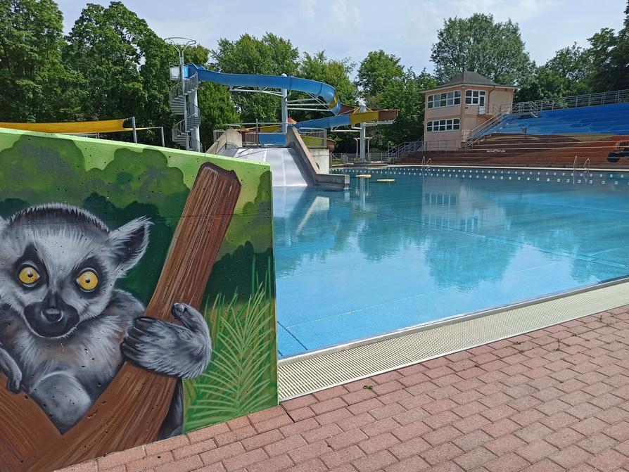 Endspurt für die Freibadsaison in Osnabrück: Das Moskaubad-Freibad schließt am Sonntag, 6. September.