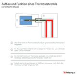 Abbildung Funktionsweise Thermostate