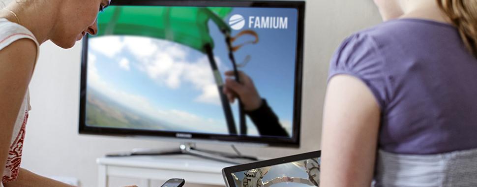 FAME solution grafik header 970x380