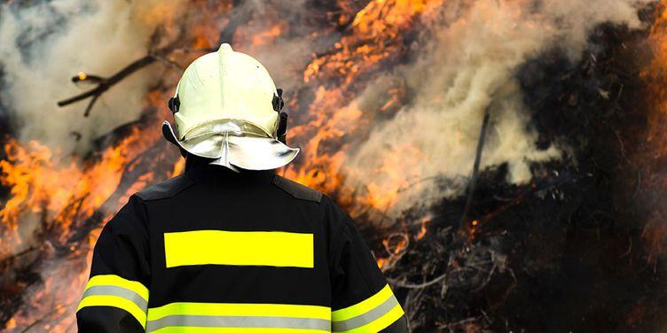 ALADIN Webnews Titelbild