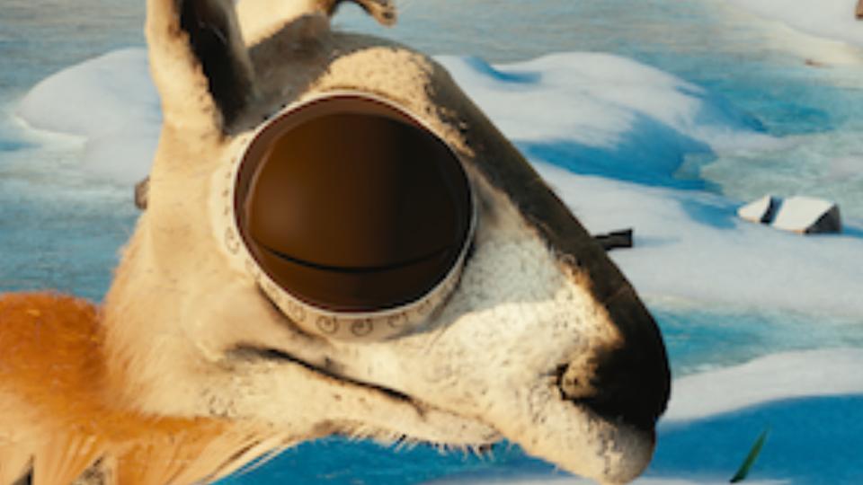 Fraunhofer FOKUS FAME 360° Video Playout FOV