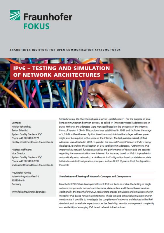 Screenshot Project information IPv6