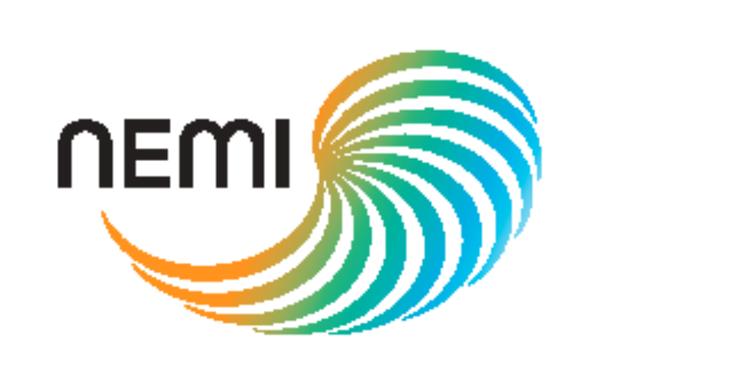 NEMI Project Logo 970/485