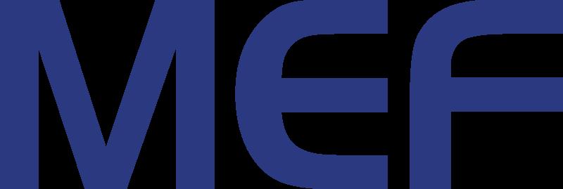 NGNI, FFF 2017, Supporter, Logo, MEF
