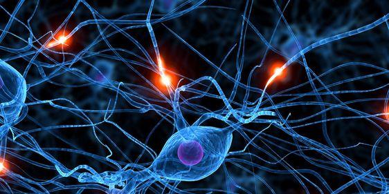Nervenzelle PlanQK