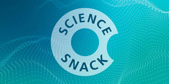 INNO, FOKUS-Akademie, Science Snack Eventbox, 14.10.2021