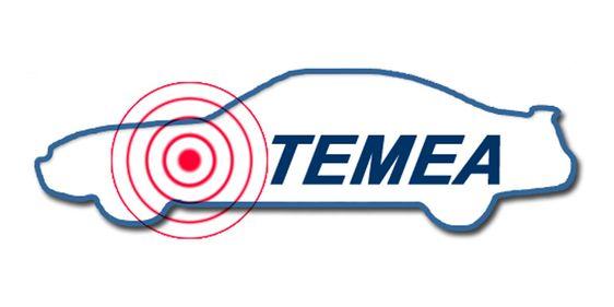 TEMEA Logo