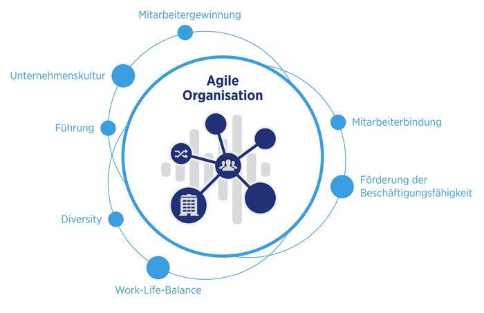 Hays  HR Report  agile Organisation