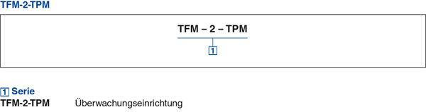 large_tab4_Serie TFM-2/TPM